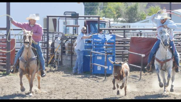 "Cooper's grandfather, Jim Selchert, and Cooper's uncle, Steven ""Red"" Selchert, look to lay this steer out nice and neat."