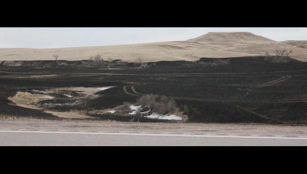 ​The Wolf Fire destroyed over 2,500 acres around Highway 14 near Quinn. The tremendous wind, though cold, carried the flames so fast that some spots were jumped, even leaving a drift of snow visible in the aftermath south of the highway.